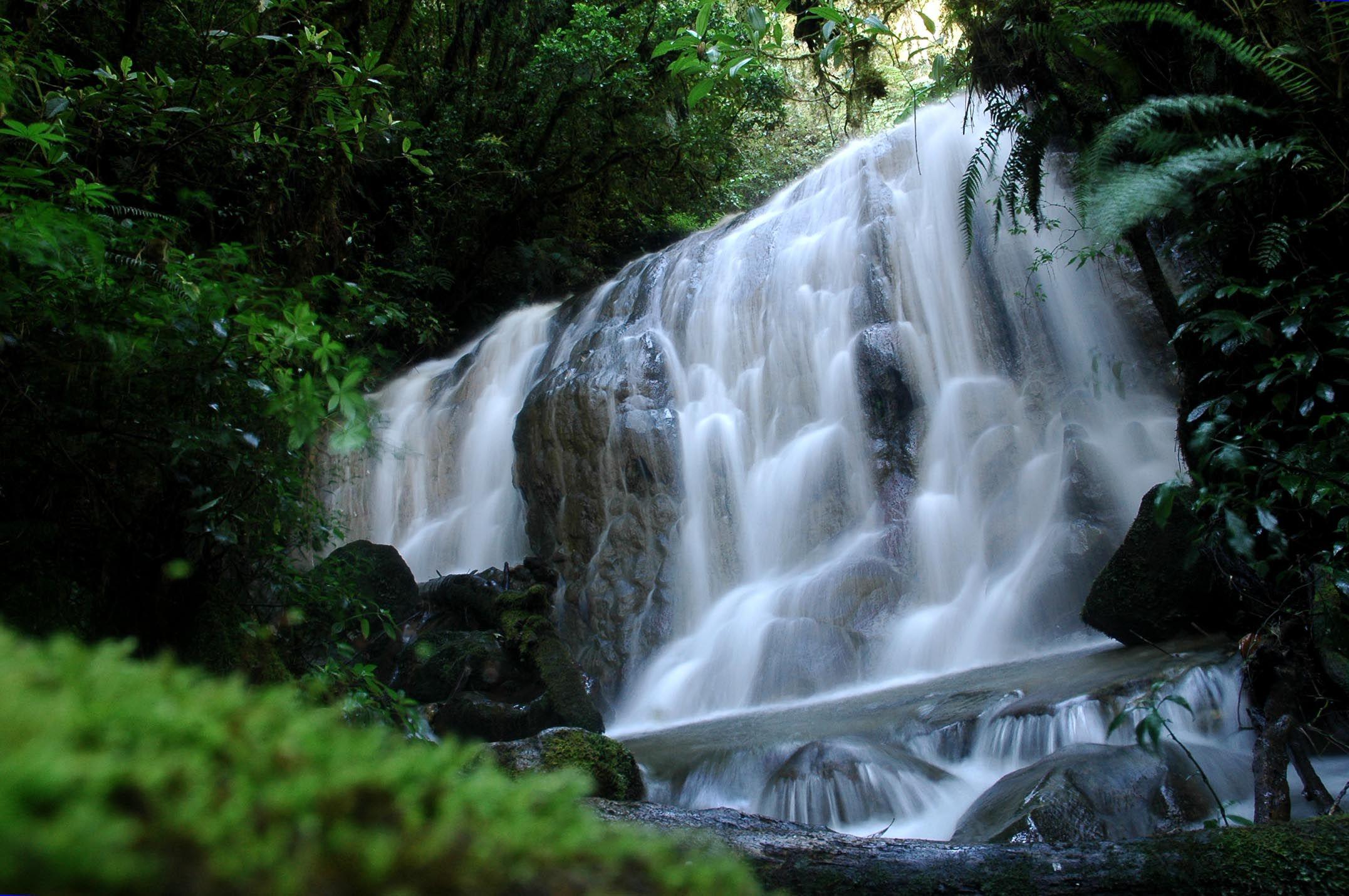 Air Terjun Pancaweuleuh Gunung Gede Pangrango Air Terjun Air Pegunungan