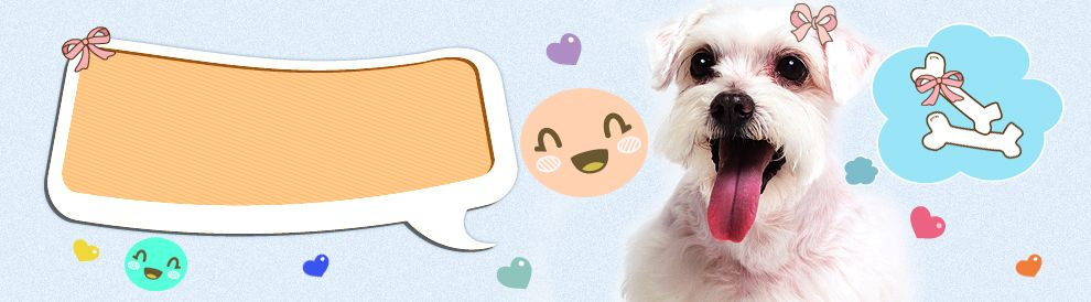 Pet Supplies Pet Products Online Pet Store Animal Products Online Pet Store Pet Supplies Online Pet Supplies