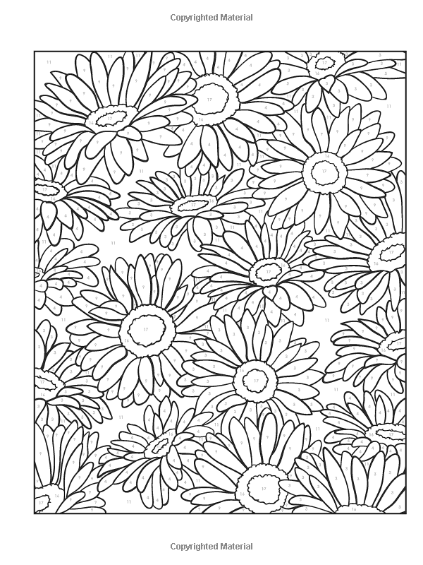 Creative Haven Floral Design Color By Number Coloring Book Creative Haven Coloring Books Jessica Mazurki Flower Coloring Pages Coloring Pages Coloring Books