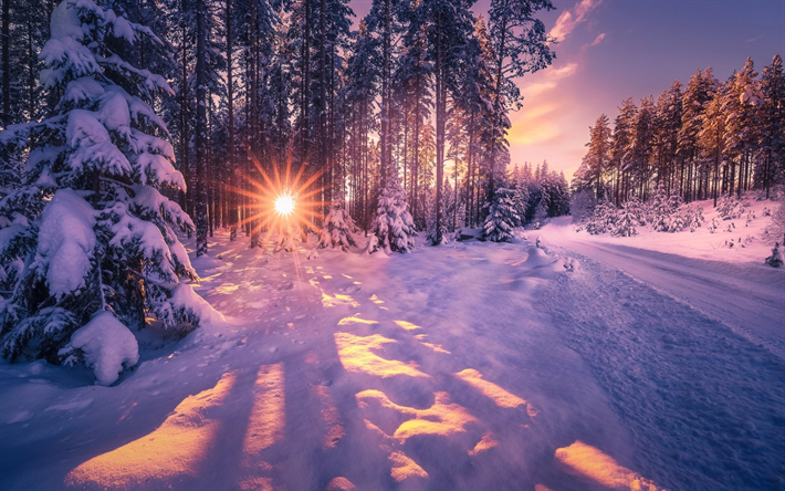 Herunterladen Hintergrundbild Winter Wald Schnee Sonnenuntergang Abend Landschaft Winter Sonnenuntergang Hintergrundbilder Winter Winterbilder