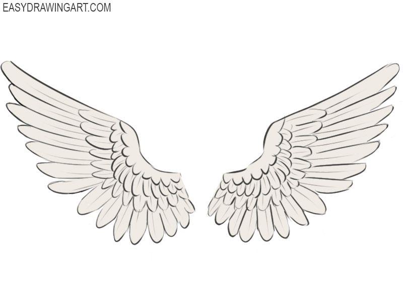 How To Draw Wings Wings Drawing Easy Drawings Art Drawings