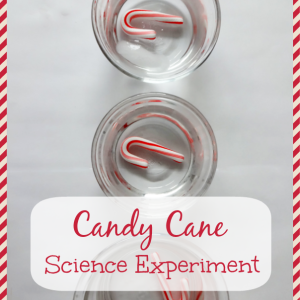 Christmas Science: Baking Soda, Vinegar, and Cookie Cutters » Inspiration Laboratories