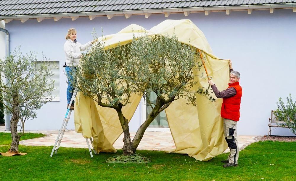 Best Die MEIN SCH NER GARTEN Redakteure Karina Nennstiel und Dieke van Dieken beim Einwintern eines gro en