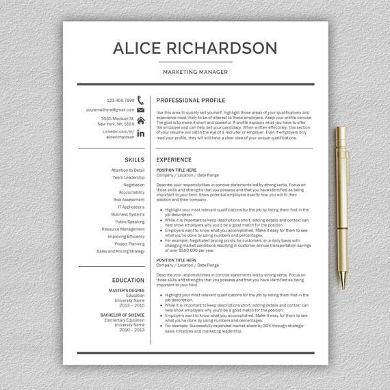 Professional Resume Template For Word Professional Cv  All Things