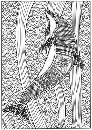 Novosti Dolphin Coloring Pages Coloring Pages For Grown Ups Coloring Pages