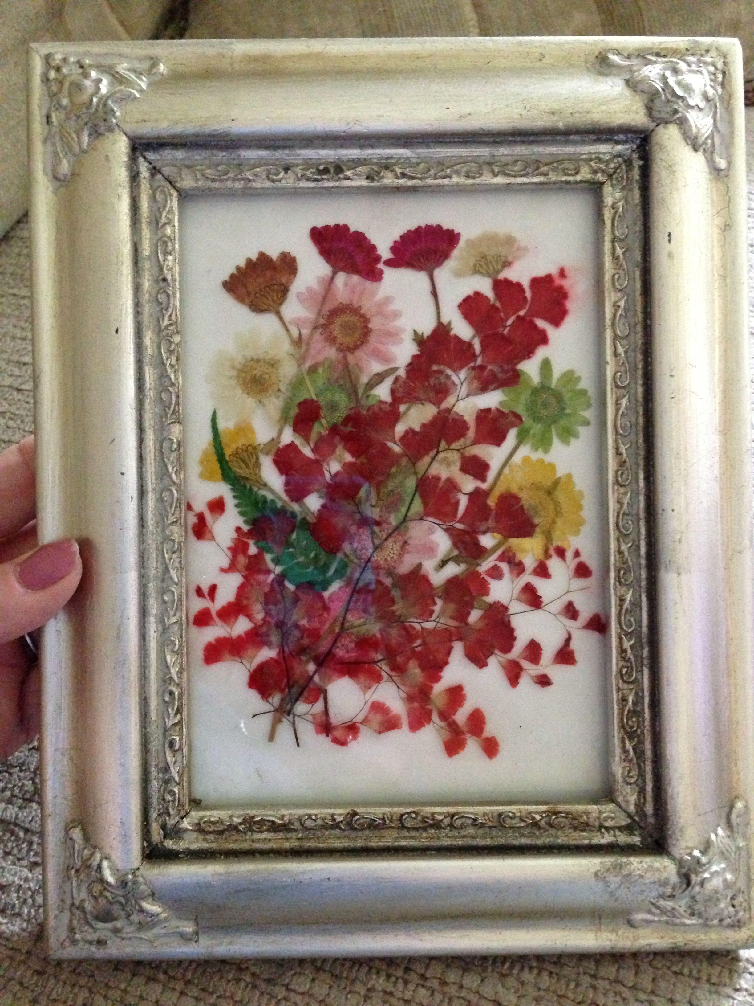 Framed dried flowers | Crafts I have done | Pinterest | Flower ...