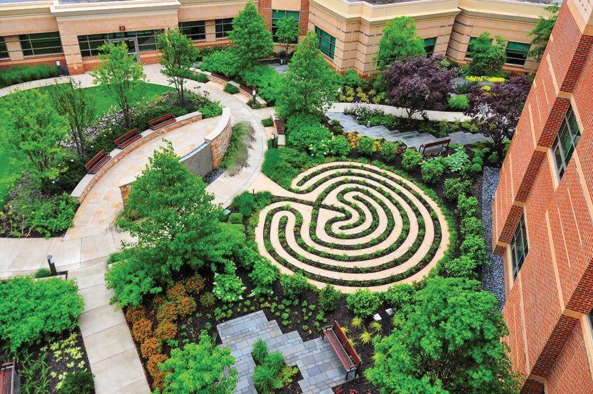 Rooftop Retreat Healing garden