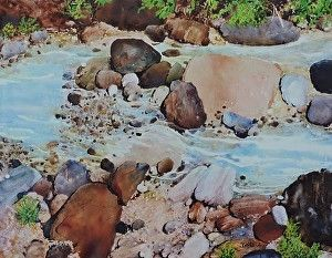 The Pebble Collection by Jeff Gorrell in the FASO Daily Art Show