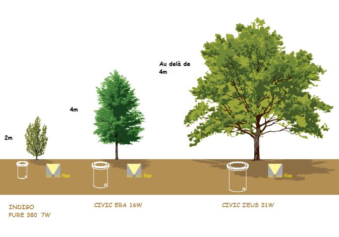 Comment éclairer un arbre ? - Eclairage Jardin | jardin ...