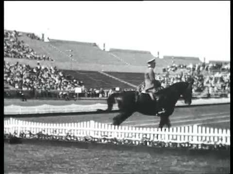 Olympische Spiele 1936 Friedrich Gerhard Absinth Olympische Spiele Pferd Und Reiter Reiten