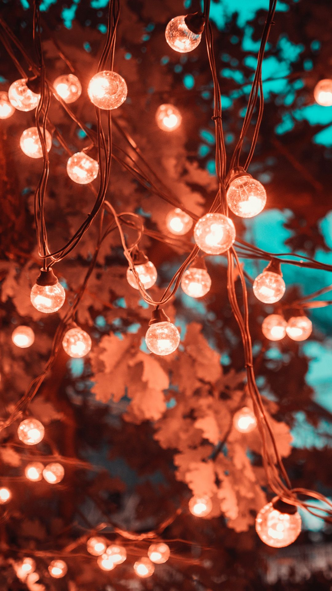 Wallpapers Light Emitting Diode Lighting Christmas Lights Branch Incandescent Christmas Phone Wallpaper Iphone Wallpaper Lights Christmas Lights Wallpaper
