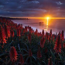 Foto Foto Pemandangan Alam Yang Spektakuler Dan Sangat Indah Pemandangan Fotografi Pemandangan Matahari Terbit