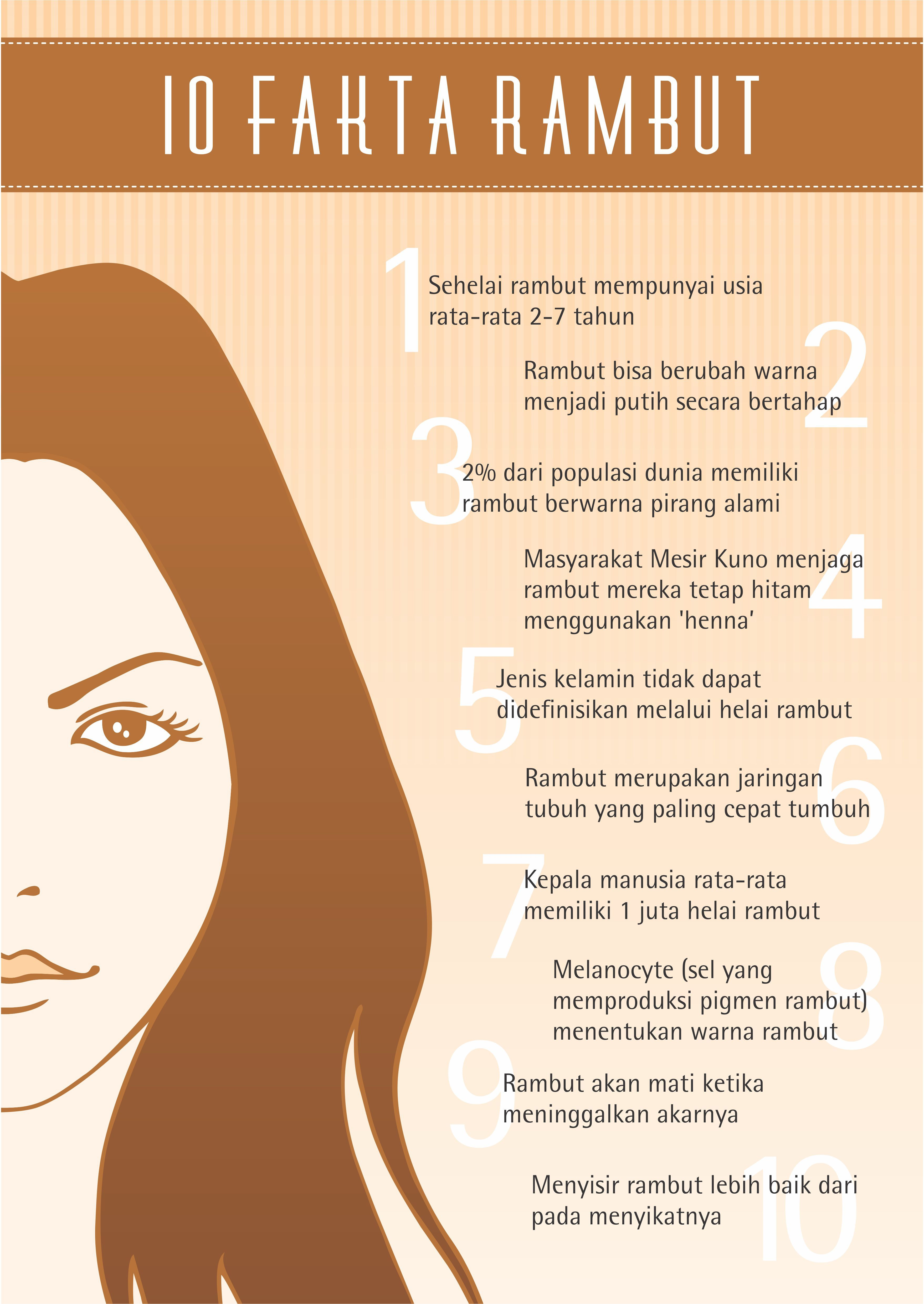 10 Fakta Rambut Beauty Infographic Beauty Infographic Tips Kecantikan Recommended Skin Care Products
