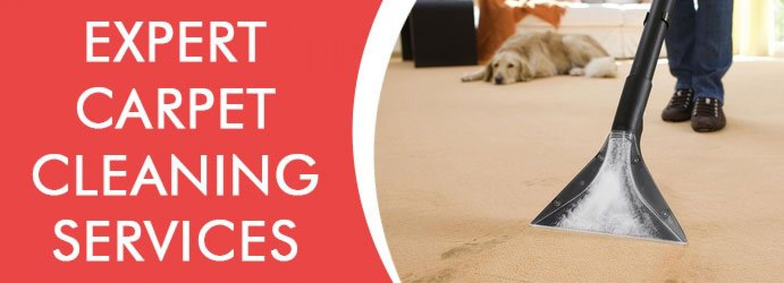 Carpet cleaning ipswich croozi with images how to