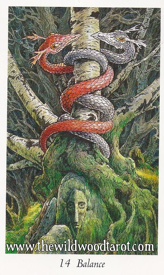 Inner Whispers Beauty And The Beast: Inner Whispers: Wildwood Tarot