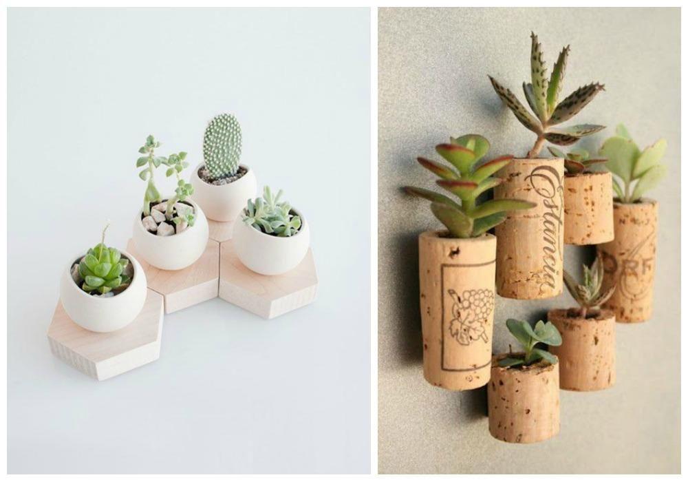 Suculentas decoracion buscar con google suculentas for Macetas para interiores hogar