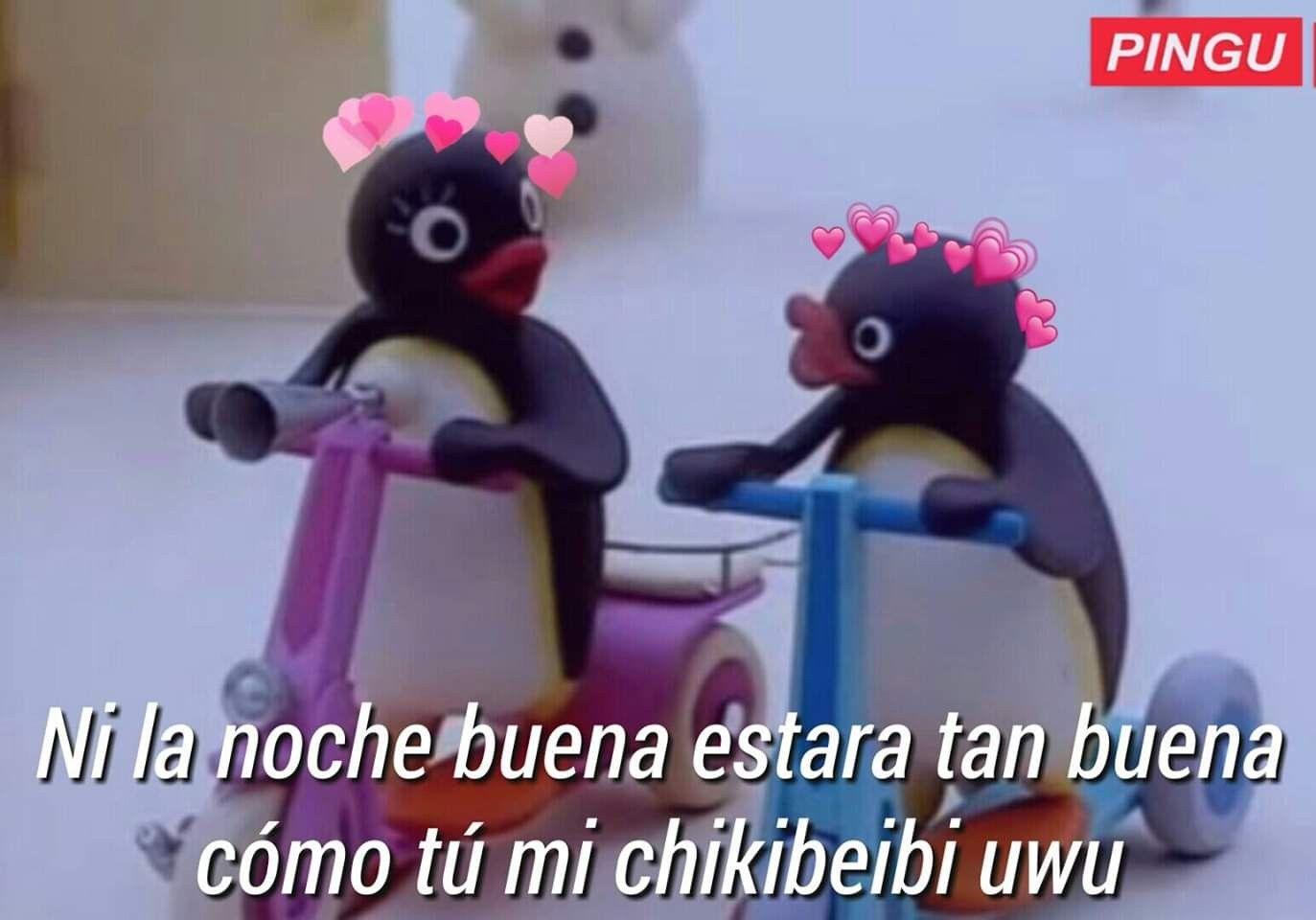 52 Best P Images Pingu Memes Pingu Love Memes
