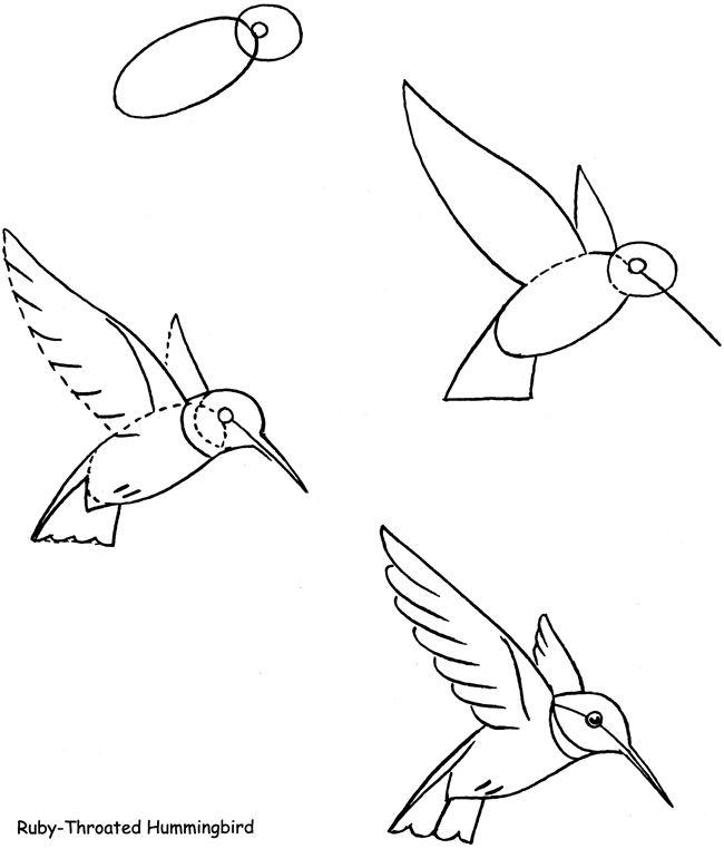 Le Martin Pêcheur Dessin De Colibri Dessin Oiseau Et Art
