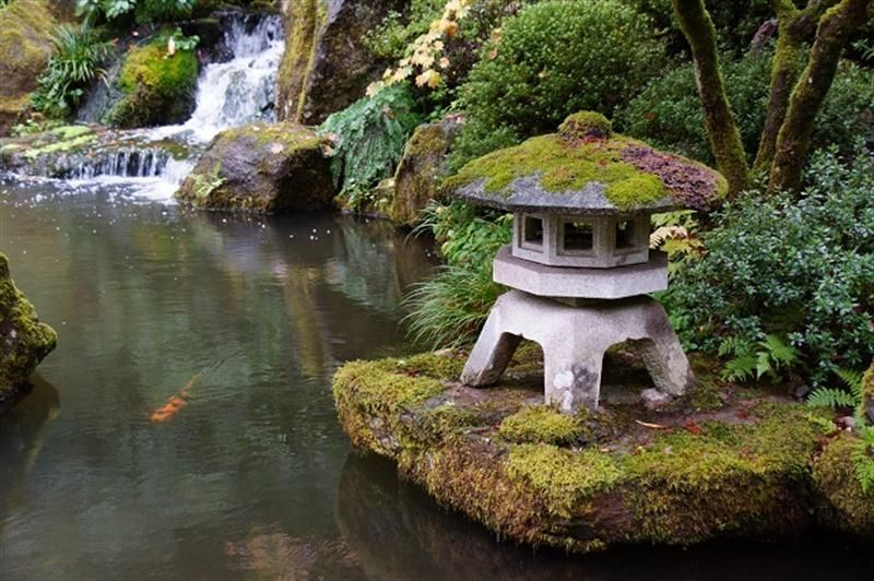 The best concept practices for japanese style garden for Small japanese water garden