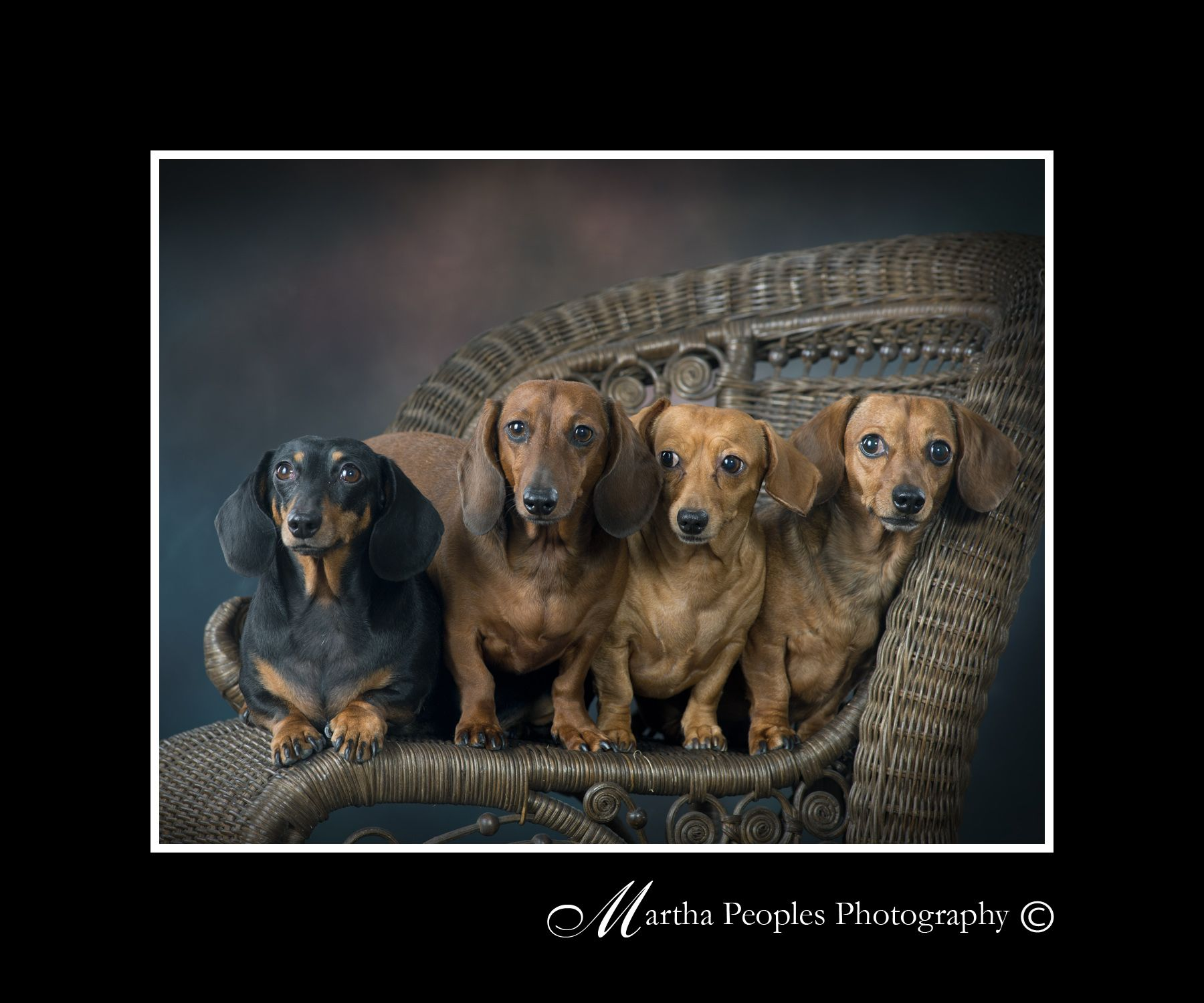Photography By Martha Peoples Photography La Grange Nc Kinston
