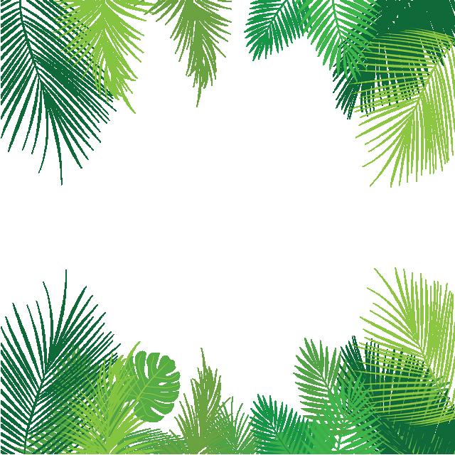Tropical Palm Leaves Png Png Free Download Palm Tropical Leaves Leaves Png And Vector With Transparent Background For Free Download Poster Bunga Pernikahan Romantis Bingkai Bunga