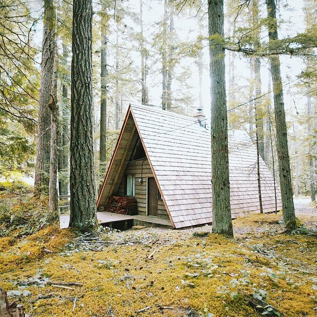 Life in the forest, just outside of Mount Rainier National Park #stayandwander…