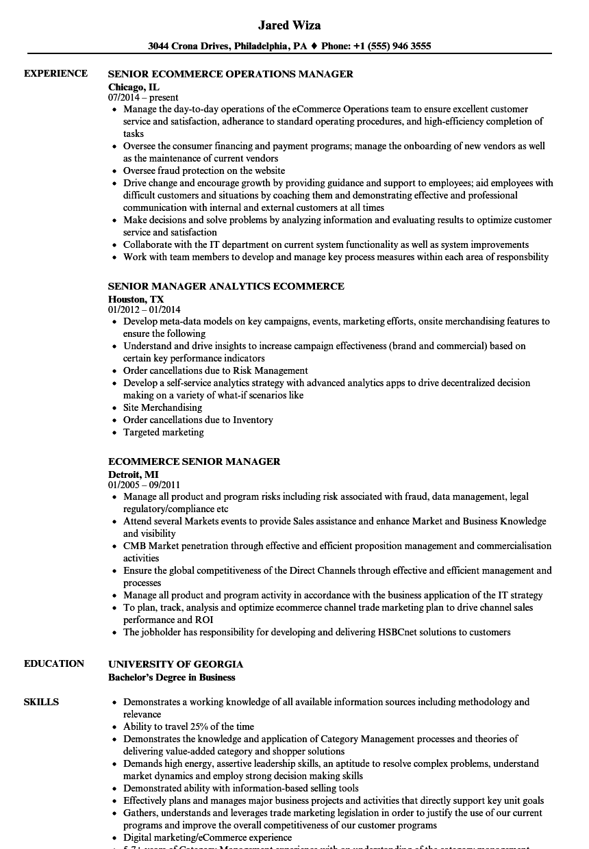 E Commerce Experience Resume Examples , commerce