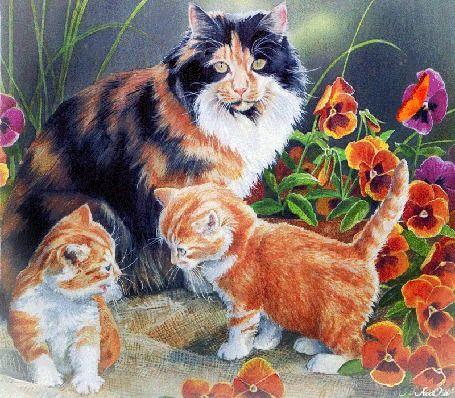 Гиф анимация Кошка с маленькими котятами гуляет в саду ...