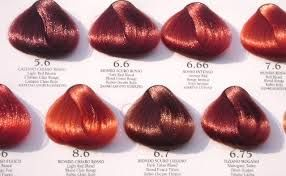 Copper Red With Images Red Hair Color Chart Copper Red Hair