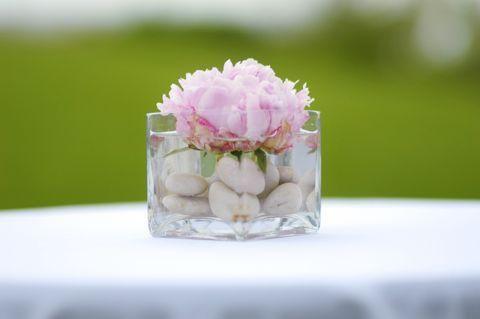 Los centro de mesa pueden ser tan sencillos como una rosa - Centros de mesa sencillos ...