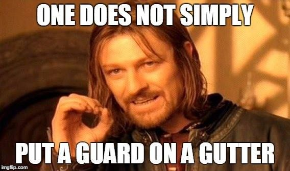 Take it from Boromir. One-piece seamless gutters are the way to go!
