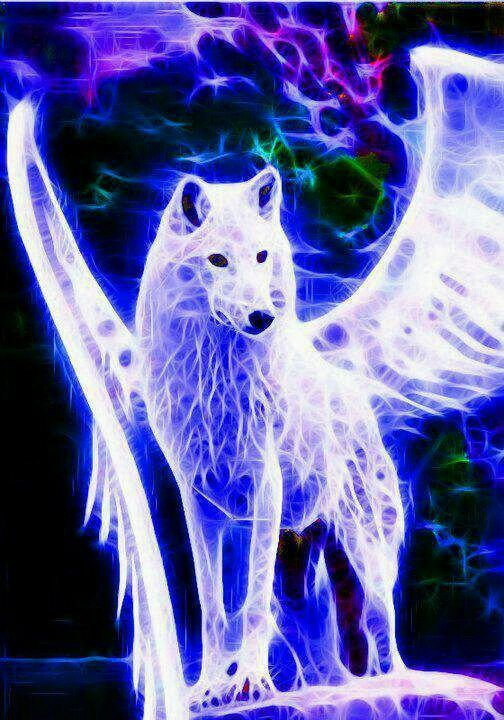 This Is So Awesome In 2019 Fantasy Wolf Wolf Pictures