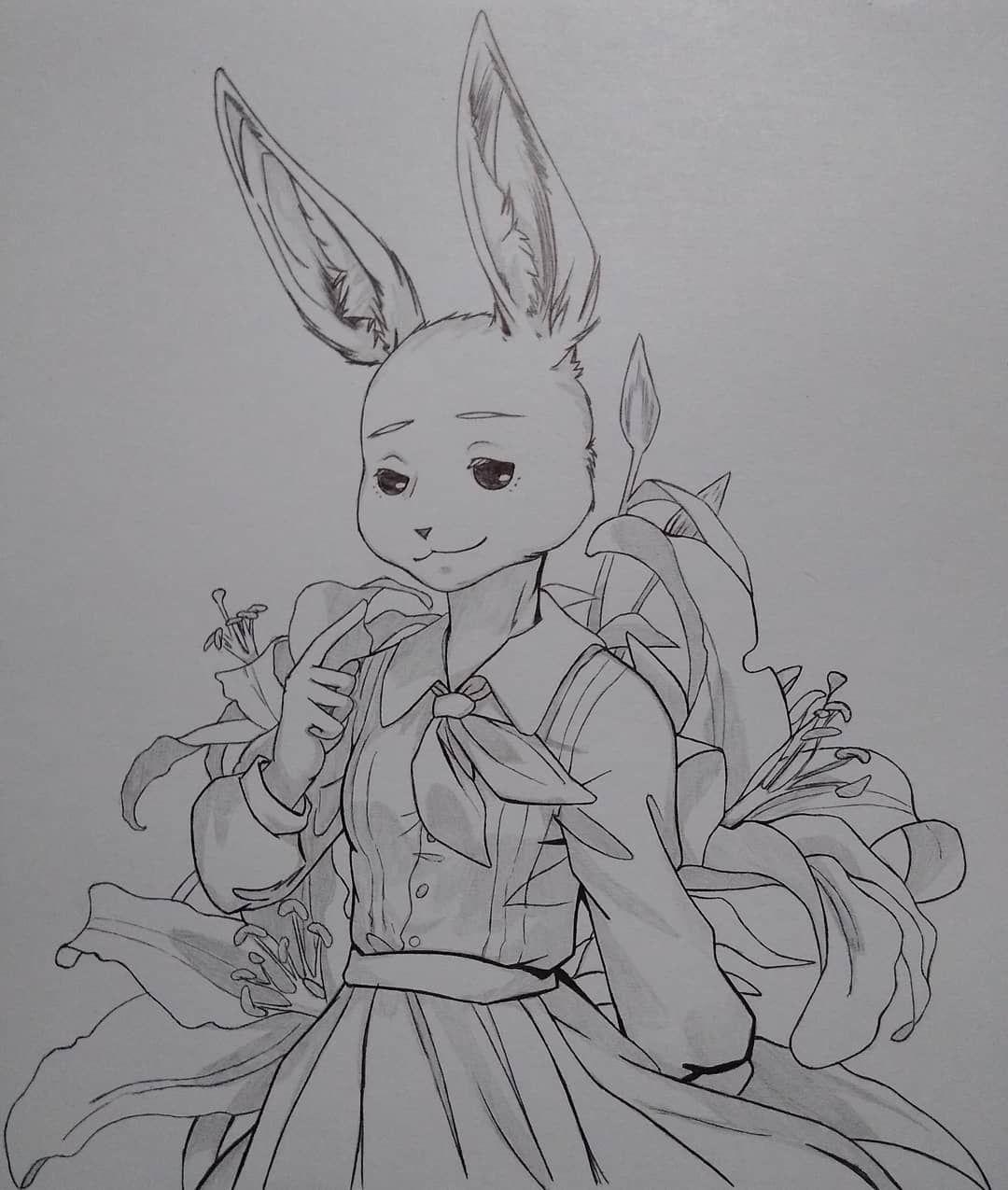 Haru ! She is from beastars in 2020 Manga cute