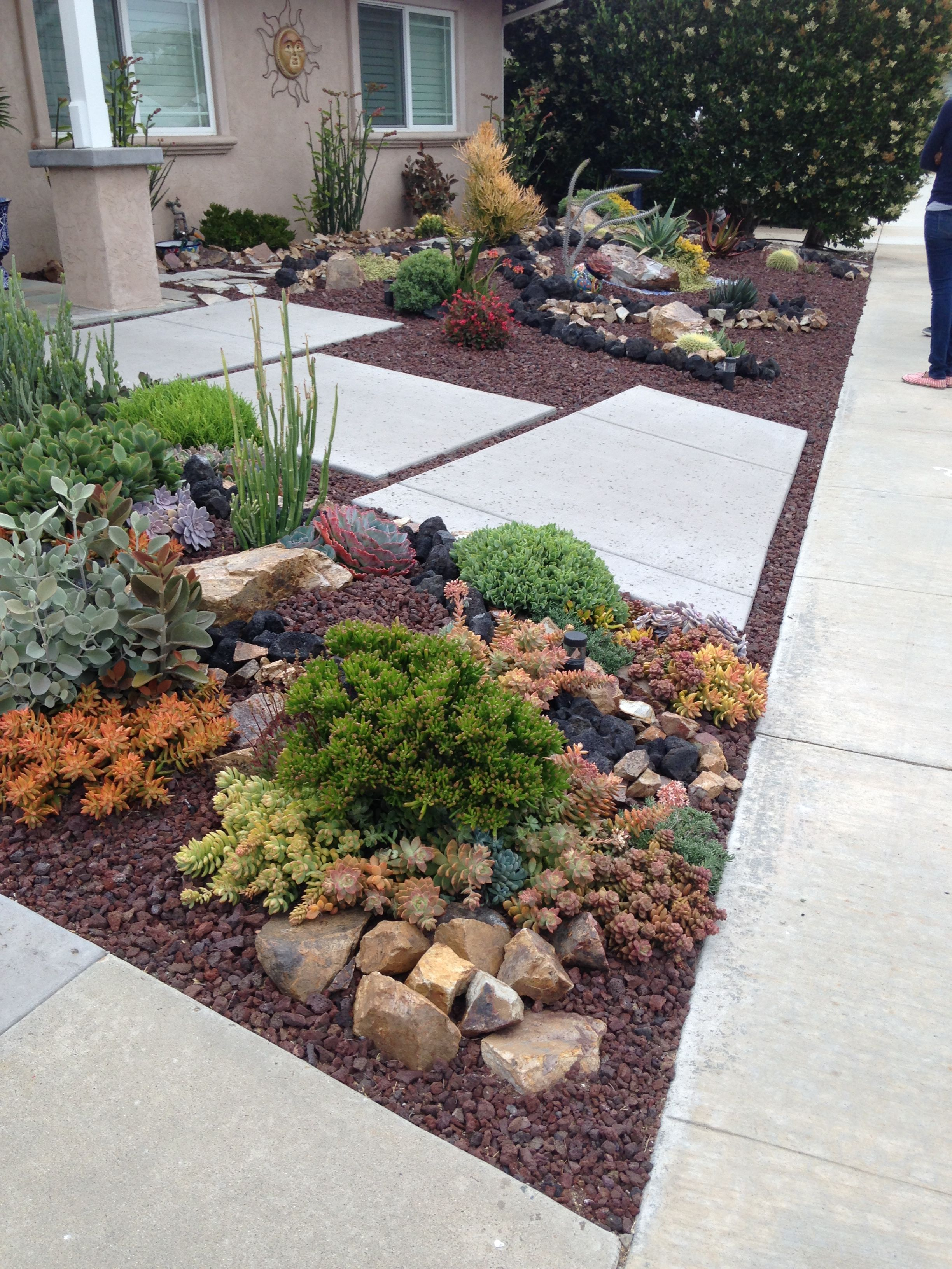 Attractive Water Wise Front Lawn With Drought Tolerant Plants Rocks Landscaping With Rocks Small Front Yard Landscaping Low Maintenance Landscaping Front Yard