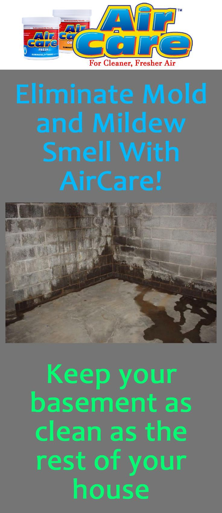 How to get rid of mold and mildew smell in your basement