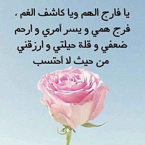 تصاميم اسلاميه صور رمزيات رمزيات دينيه امين دعاء ادعيه اسلاميات تذكير غرد بصوره غرد بتصميمك حسابات دينيه Rose Flowers Plants