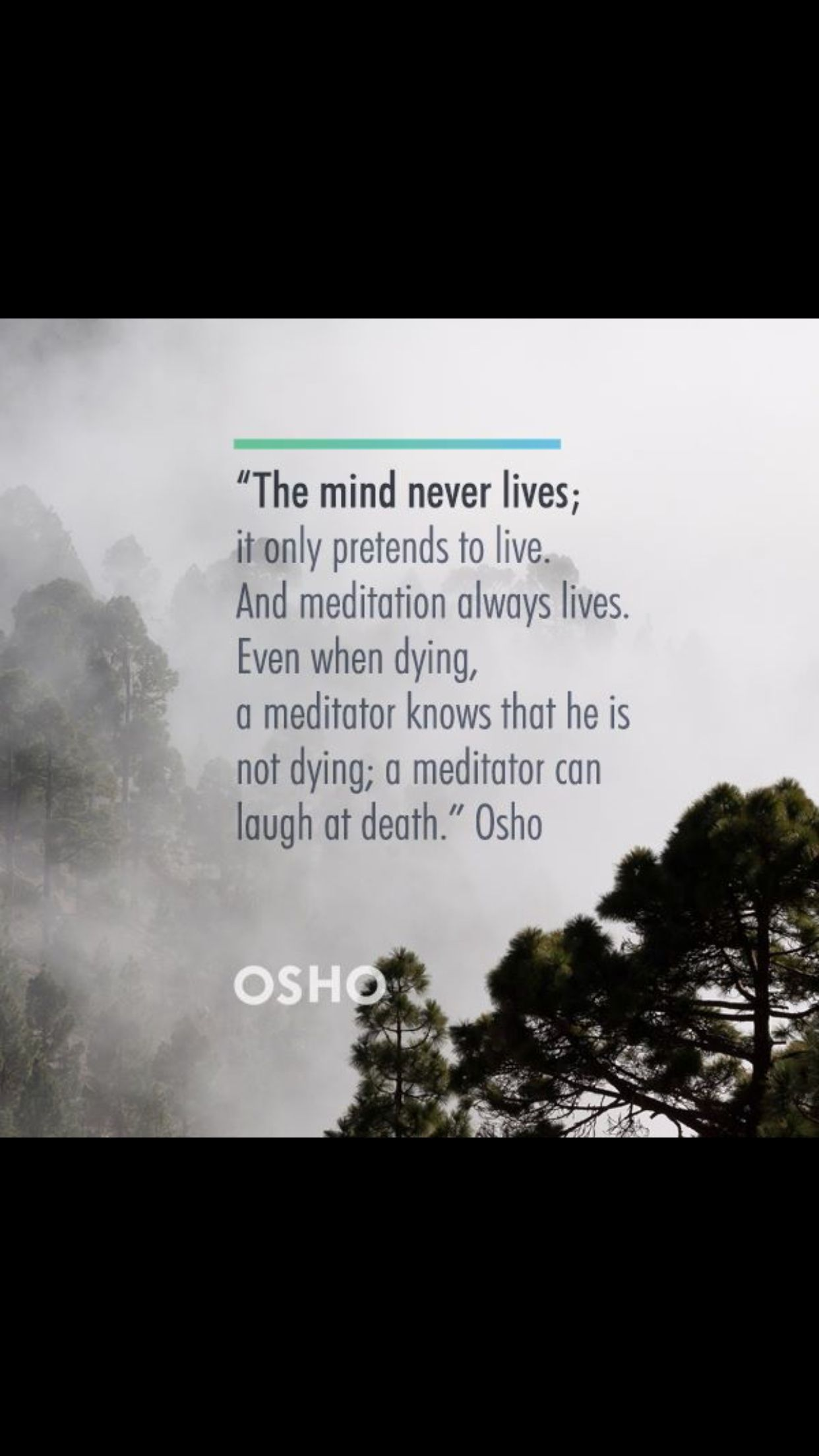 Pin By Vatsal On Beloved Osho Osho Osho Quotes On Life