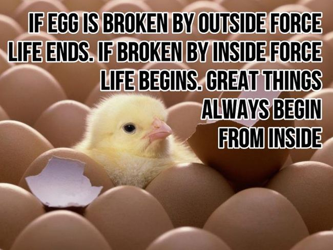 If egg is broken by outside force, Life ends. If broken by inside force, Life begins. Great things always begin from inside. http://ow.ly/OYTPZ
