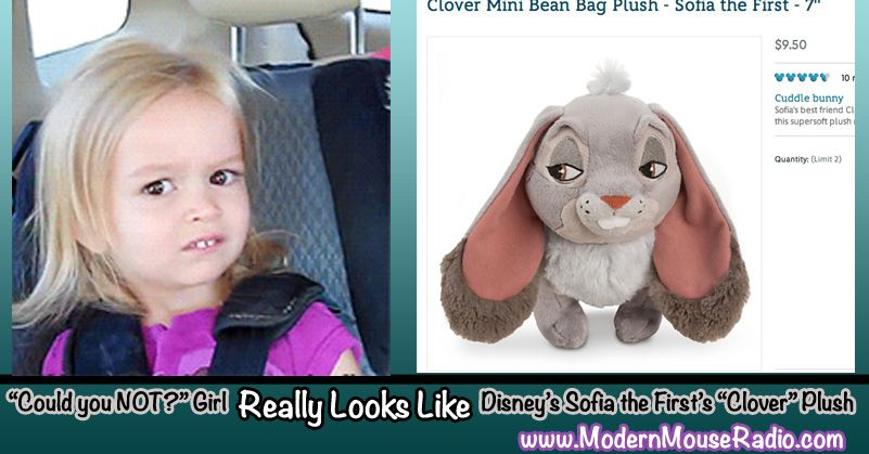 2e7ca86693e71f2b383a403626c43156 could you not\u201d girl really looks like disney memes pinterest,