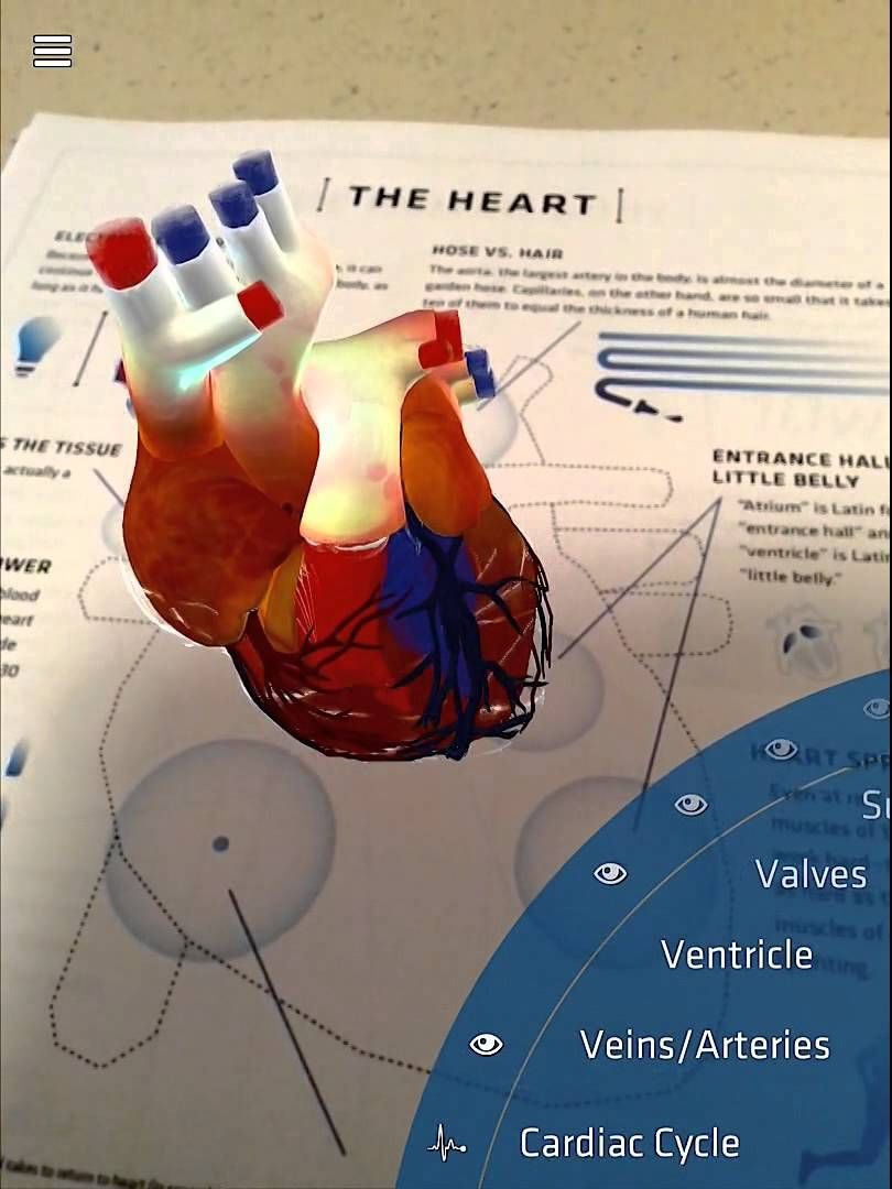 New Update to DAQRI\'s Anatomy 4D App-The Heart Target | Anatomy 4D ...