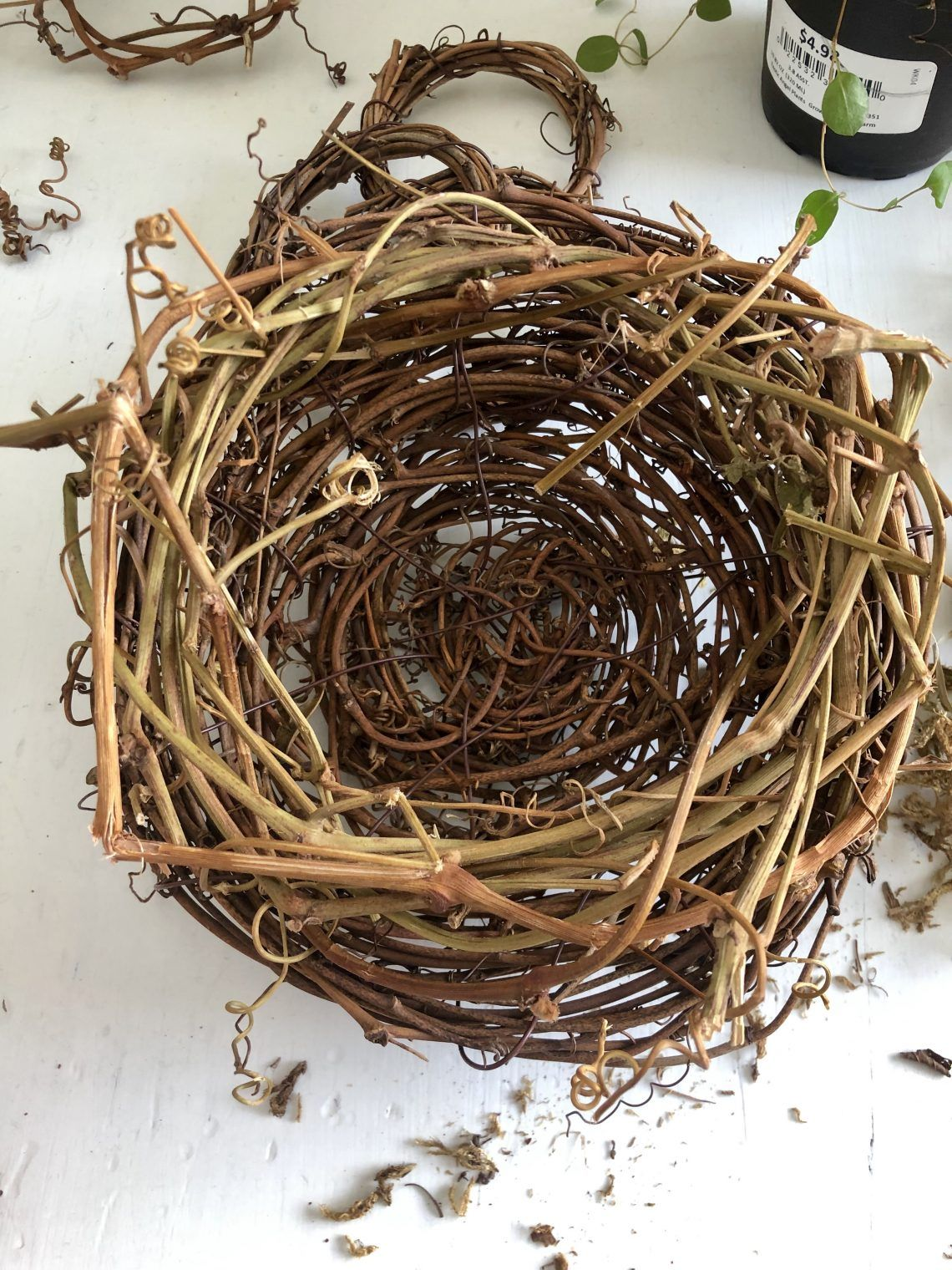 Foraging Happiness DIY Bird Nest Bird nest craft, Diy