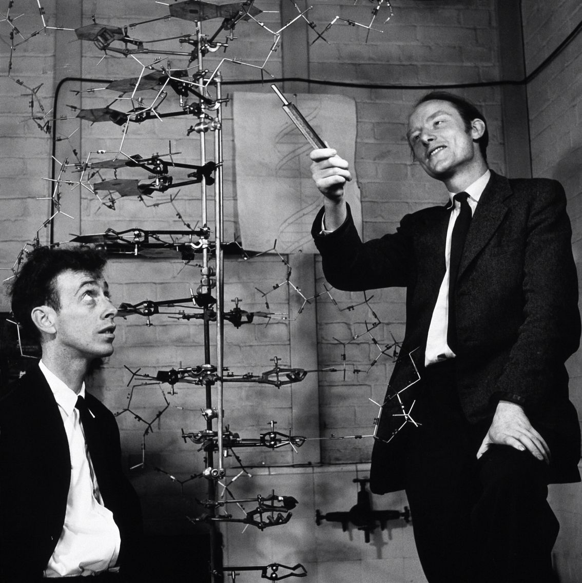 Watson And Crick With The First 3d Dna Model In Which They Invented Dna Model James Watson Rosalind Franklin