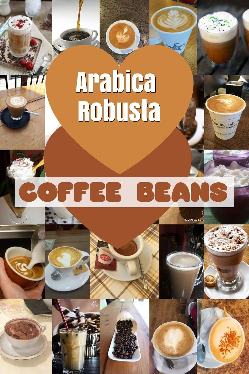 36+ What are coffee beans made out of trends