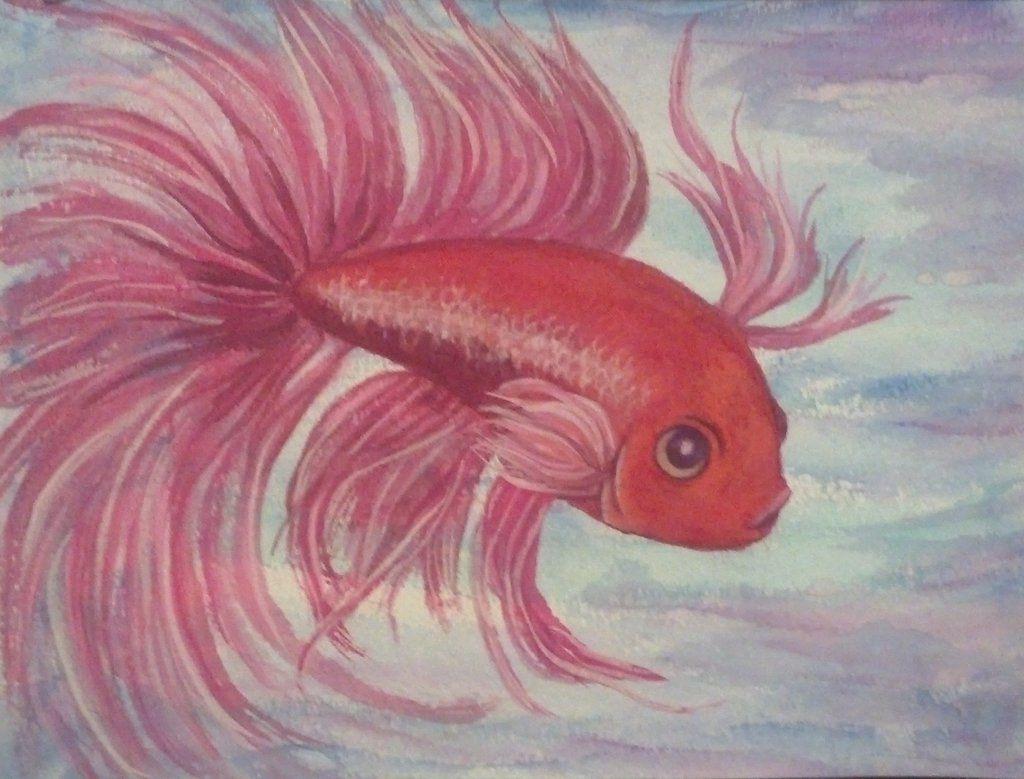 betta fish acrylic painting - Google Search   ♥ Betta Fish ...