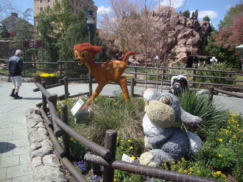 Motheru0027s Day Ideas In Orlando Including Disney World   Epcot Butterfly  Garden (Image)