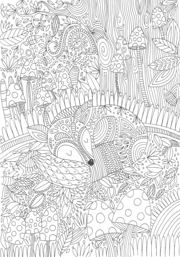 little Wolve Coloring Page