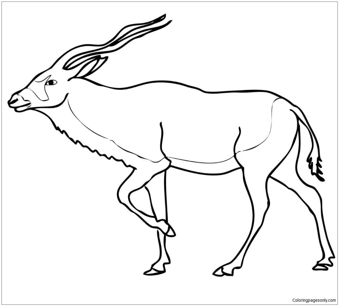 Addax Antelope Coloring Page Addax Antelope Coloring Pages