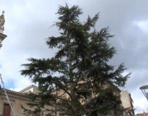 "Alaimo: ""Natale Pacco…a Caltanissetta, triste albero in attesa di addobbi""<span class='video_title_tag'> -Video</span>"