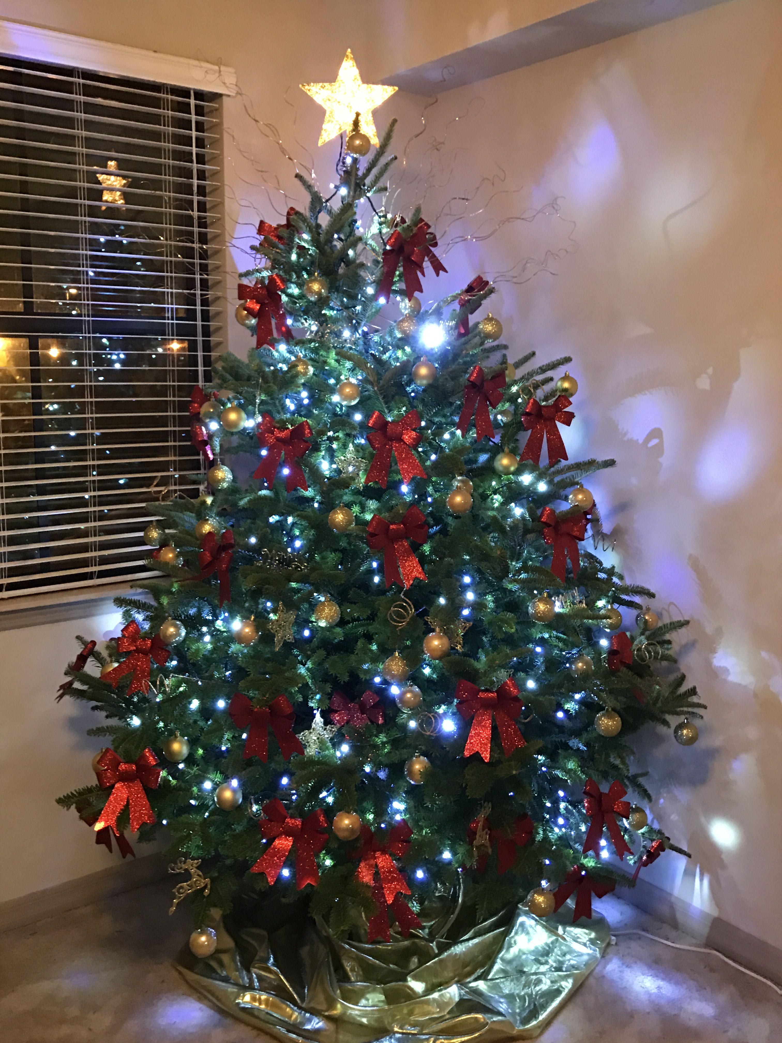 Christmas tree / Árbol de Navidad