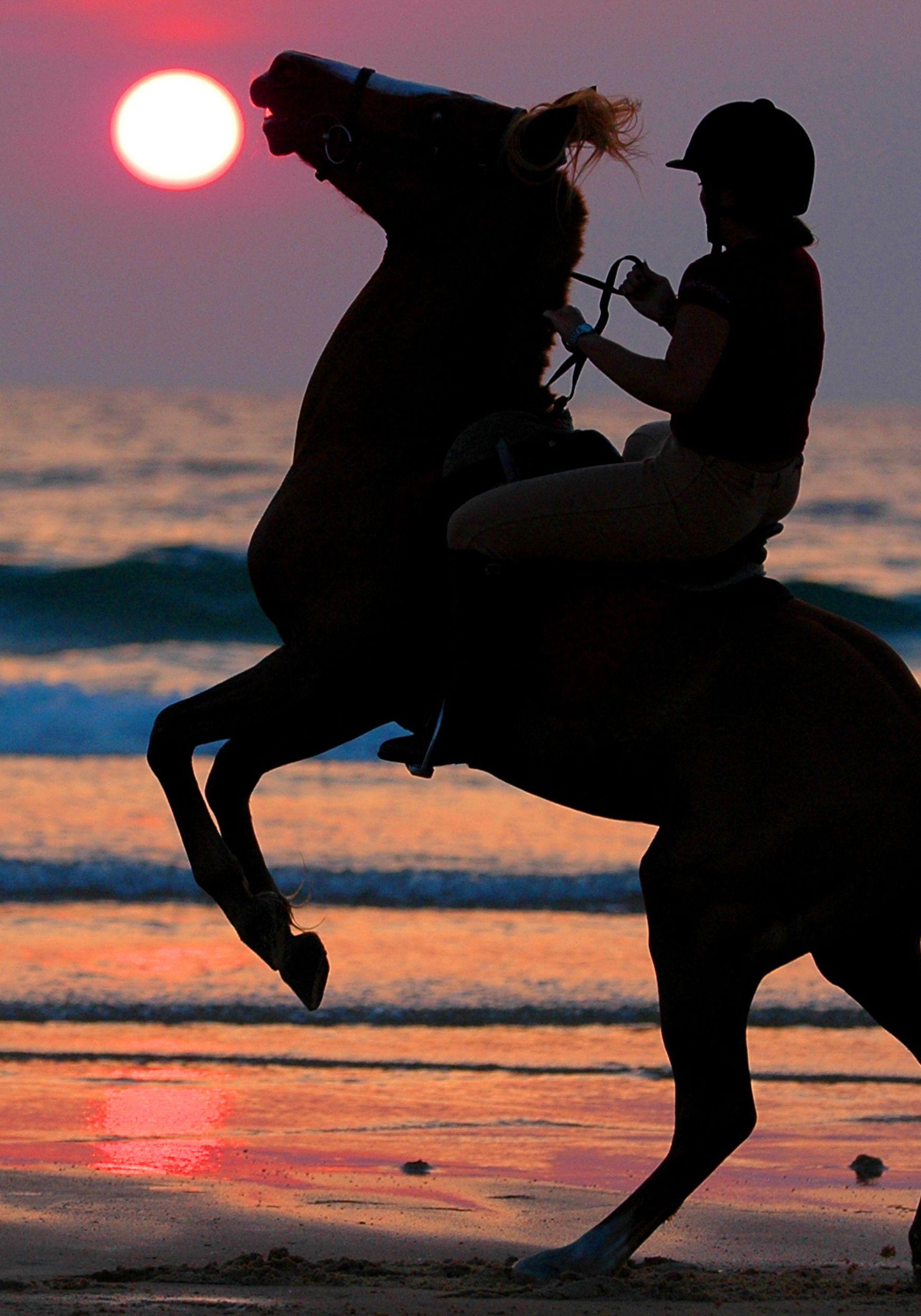 Chevauchez Au Coucher Du Soleil Sur Les Plages De L Atlantique Landes Chevaldaventure Cheval Randonnee A Cheval Photo Magnifique